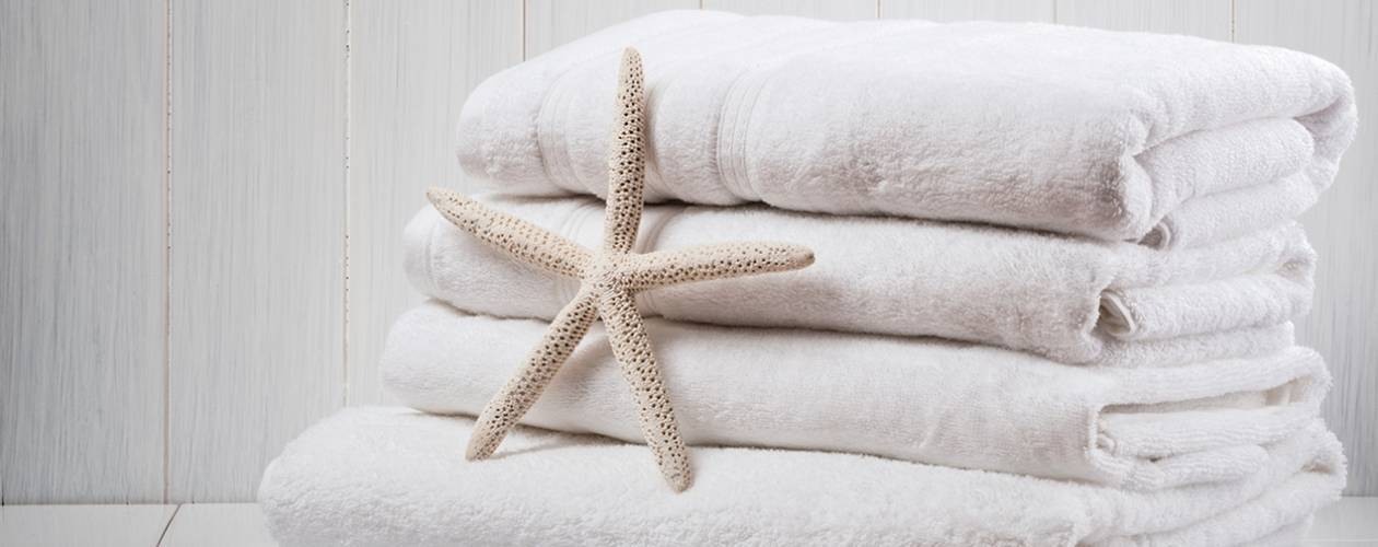 Set of clean, white towels with a coral starfish in front